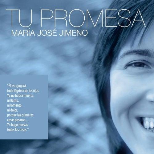 Tu Promesa by Maria Jose Jimeno