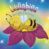 Lullabies for Little Dreamers by Various Artists