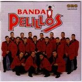 Rompiendo Corazones by Banda Pelillos