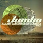 Álamo. Canciones en Madera, Vol 1 by Jumbo