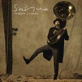 Vinagre Y Rosas by Joaquin Sabina