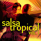 Salsa Tropical Vol.1 by Emerson Ensamble