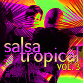 Salsa Tropical Vol.3 by Emerson Ensamble