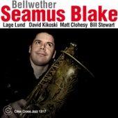 Bellwether by Seamus Blake