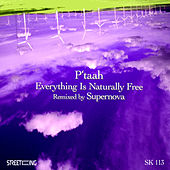 Everything Is Naturally Free by P'taah