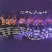 Mandolinata by Alain Morisod