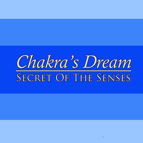 Secret Of The Senses by Chakra's Dream