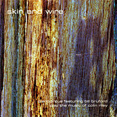 Skin and Wire by Piano Circus