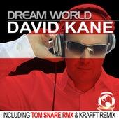 Dream World by David Kane