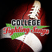 College Fight Songs by 101 Strings Orchestra