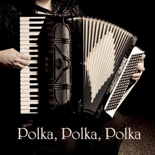 Polka, Polka, Polka by 101 Strings Orchestra
