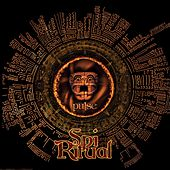 Pulse by Spi-Ritual