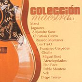 Coleccion Maestra Vol. 1 by Various Artists
