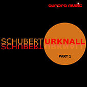 Urknall P.1 by Schubert