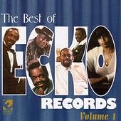 The Best Of Ecko Records Vol. 1 by Various Artists