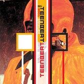 2001 Teenbeat Sampler by Various Artists