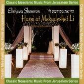 Harei At Mekudeshet Li by Elisheva Shomron