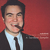 Wakefield Volume One - A Teenbeat Sampler by Various Artists