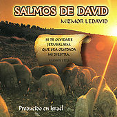 Salmos de David by Various Artists