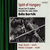 Spirit of Hungary by Yossi Zivoni