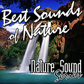 Best Sounds of Nature by Nature Sound Series