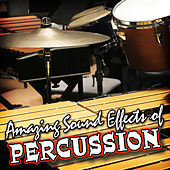 Amazing Sound Effects of Percussion by Sound Fx