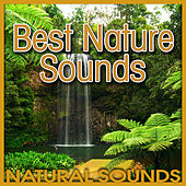Best Nature Sounds (Nature Sound) by Natural Sounds