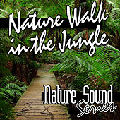 Nature Walk in the Jungle (Nature Sounds) by Nature Sound Series