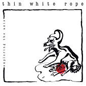 Exploring The Axis by Thin White Rope