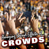 Amazing Sound Effects of Crowds by Sound Fx