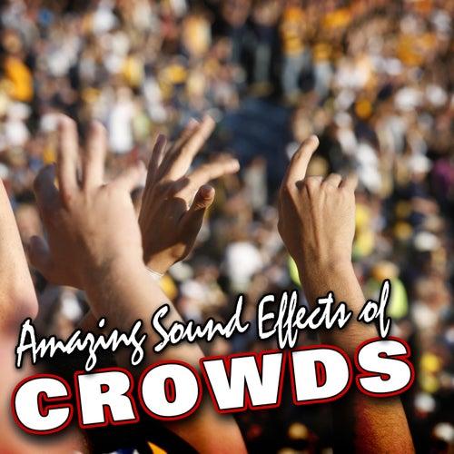 Amazing Sound Effects of Crowds by Sound Fx