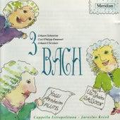 3 Bach: Johann Sebastian Bach, Carl Philipp Emanue Bach, Johann Christian Bach by Yossi Arnheim