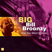 How You Want It Done by Big Bill Broonzy