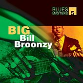 Blues Masters Volume 5  (Big Bill Broonzy) by Big Bill Broonzy