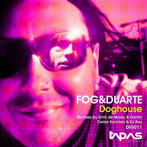 Doghouse by Fog