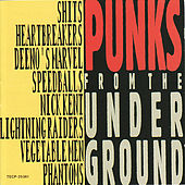 Punks From the Underground by Various Artists