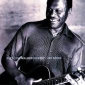 Silvertone Blues by Joe Louis Walker