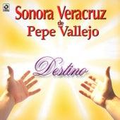 Destino by Sonora Veracruz De Pepe Vallejo