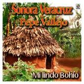 Mi Lindo Bohio by Sonora Veracruz De Pepe Vallejo