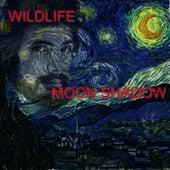 Moon Shadow by Wild Life