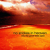Into The Great Wide Open by No Snakes In Heaven