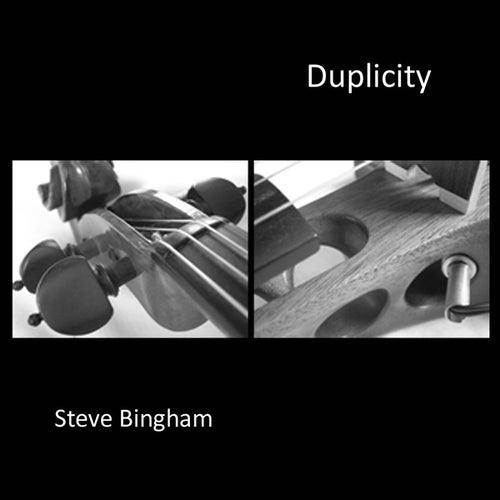 Duplicity by Steve Bingham