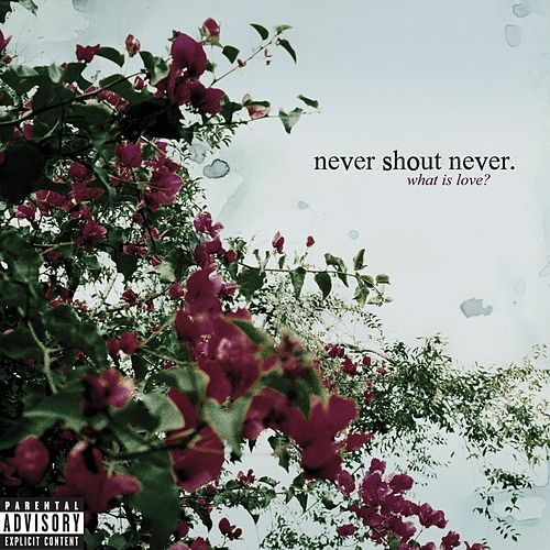 What Is Love? by Never Shout Never