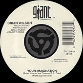 Your Imagination / Your Imagination [A Cappella] [Digital 45] von Brian Wilson