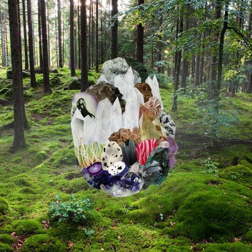 Veil Waltz by Clogs