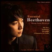 Essential Beethoven by Gwon Sun Hwon