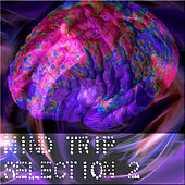 Mind Trip Selection 2 by Various Artists