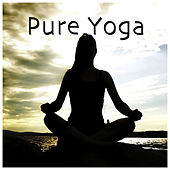 Pure Yoga by Various Artists