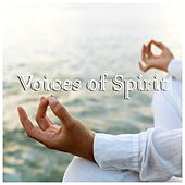 Voices Of Spirit by Various Artists