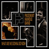 What Are We Gonna Do Now? by The Packway Handle Band